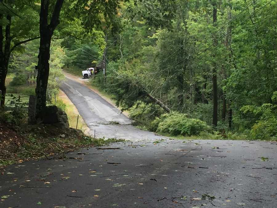 Another tree was down on wires in Weare on Mount Dearborn Road.