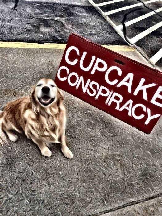 8. Cupcake Conspiracy in Merrimack