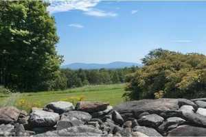 Here's a view of a wooded area and distant mountain range.
