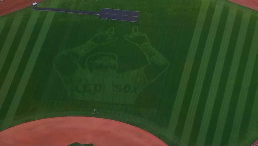 This tribute to Big Papi was cut into the center field grass at Fenway Park for the final regular season series against the Toronto Blue Jays.
