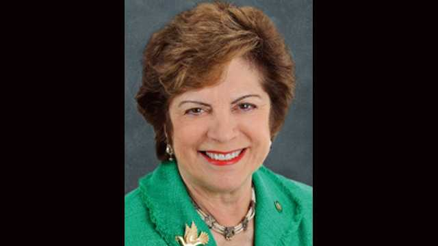 Senate Democratic Leader Nan Rich says she plans to run for Florida governor in 2014.