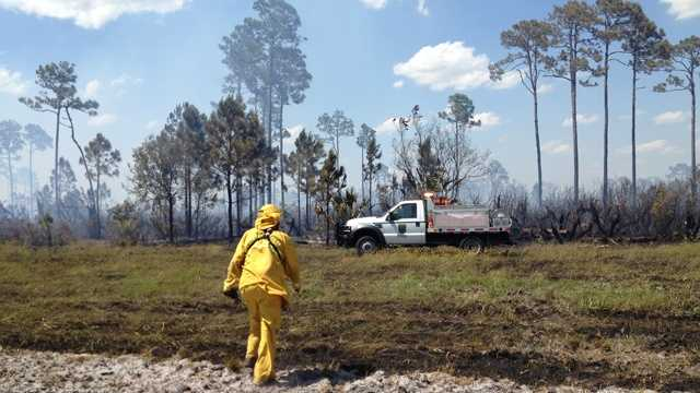 Firefighters monitor for hot spots after an 80-acre brush fire in St. Lucie County. (Cathleen O'Toole/WPBF)