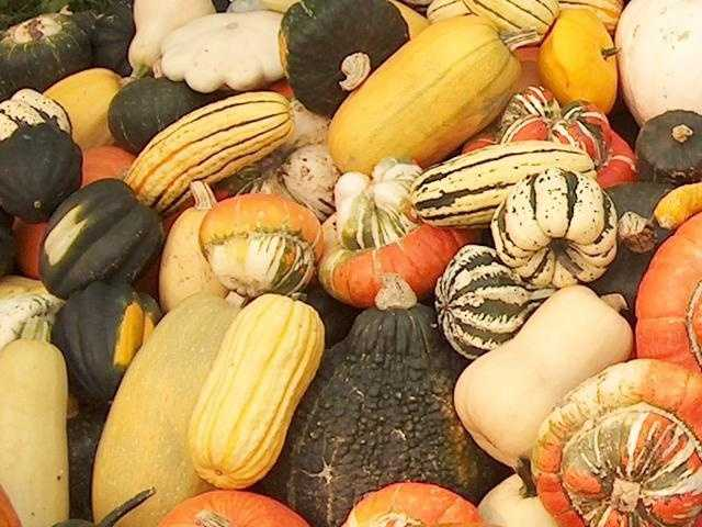Butternut squash adds color, texture, vitamins and fiber, however you prepare it.