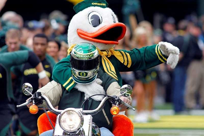 The Oregon Duck mascot is modeled after Walt Disney's Donald Duck character through a special licensing agreement. During the 2007 season opener, the Duck attacked Houston Cougars mascot Shasta for seemingly copying the Duck's routine of doing push ups after a score. The Duck was suspended for a game and the student wearing the costume received an unspecified punishment. (Photo: Eric Evans/GoDucks.com)