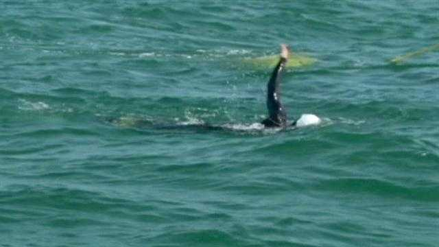 Diana Nyad is attempting to swim the 103-mile trek from Cuba to Florida.