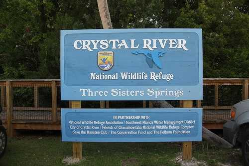 5: Crystal River - 40.5 percent