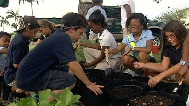 Students at North Grade Elementary School in Lake Worth are getting their hands dirty by planting healthy vegetables.