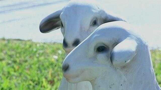 2 sheep stolen from nativity scene at RPC