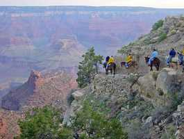 Ride horseback through the Grand Canyon. (Photo: grandcanyonnps/flickr)