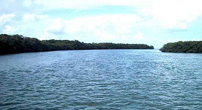 Tom's Harbor Keys is 46.00 acres.