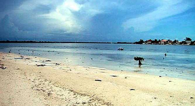 Tom's Harbor Keys is actually two separate islands situated 300 yard from shore Duck Key.
