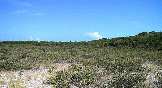 It offers a rare combination of natural beaches and deep water ocean access.