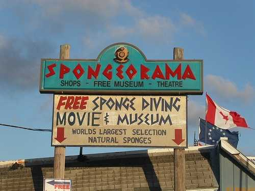 Spongeorama in Tarpon Springs: Founded in 1968, Spongeorama's sponge factory boasts the world's largest selection of natural sea sponges.  Guests can visit the Spongeorama museum, or the movie theater to learn more about the history of sponging in Tarpon Springs.