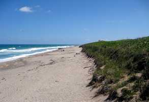 7. Hobe Sound Beach