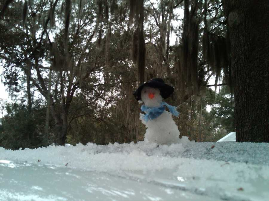 Snowman on the side of the road in Ocala. Photograph taken in 2010.