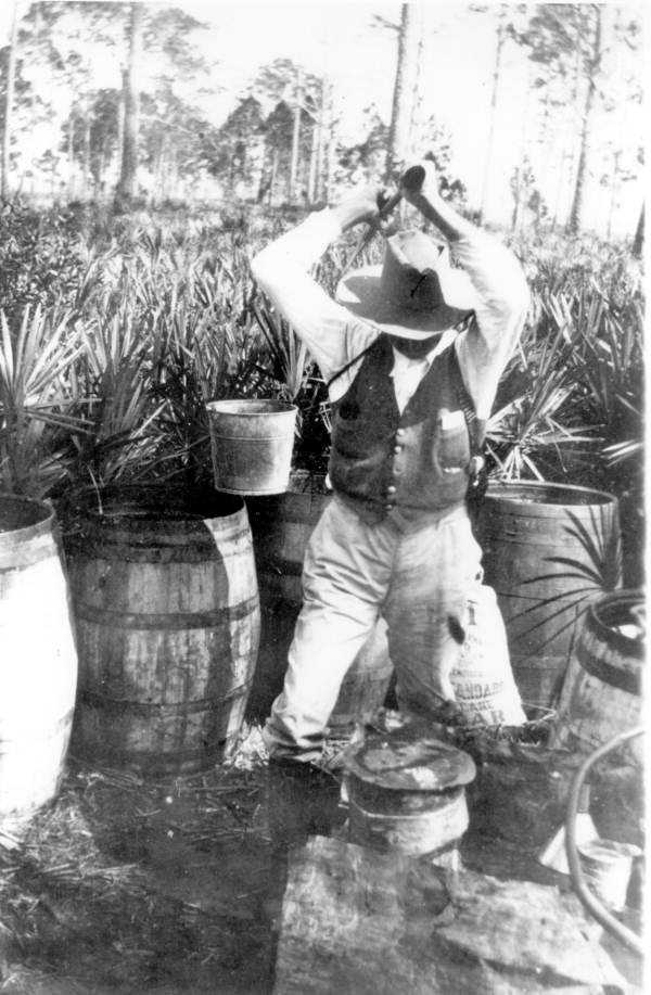 The coastline helped bring illegal booze from the Caribbean into the state, and the forests, swamps, scrub, hammocks, and bayous provided ample cover for stills.