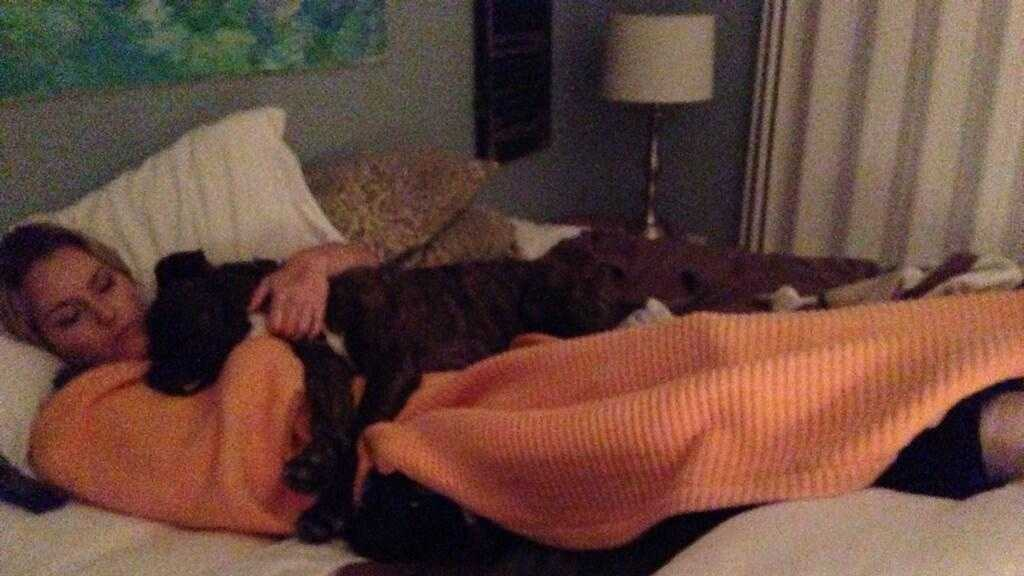 Lindsey Vonn In Bed With Dog