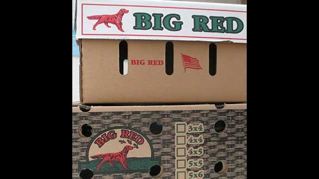 Fresh tomatoes shipped in these boxes from Big Red Tomato Packers have been voluntarily recalled because of concerns about salmonella contamination.