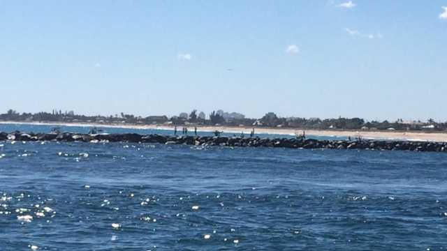 Officials search for seal in Lake Worth Inlet
