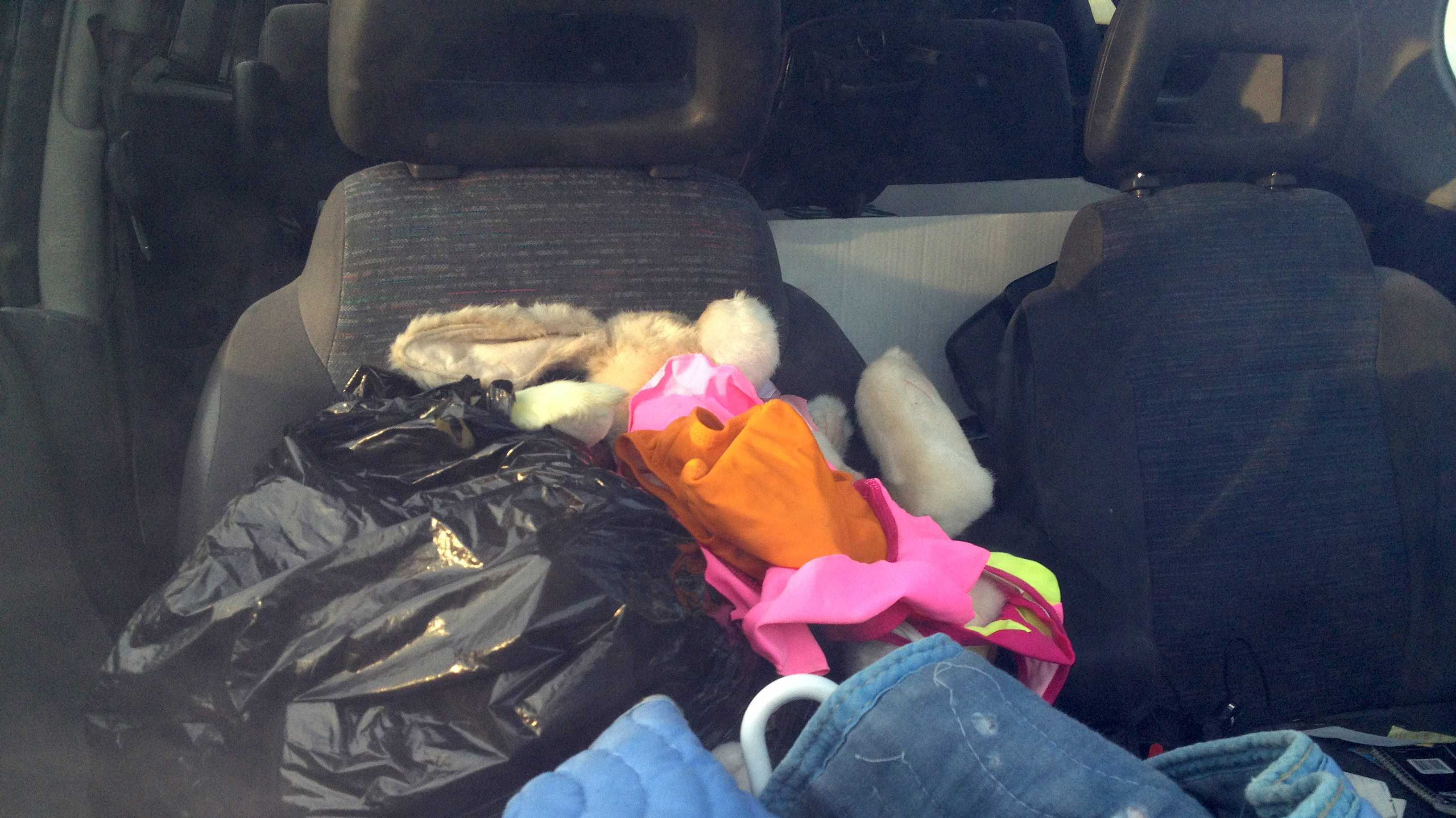 Stuffed Animals in Suspect's Car