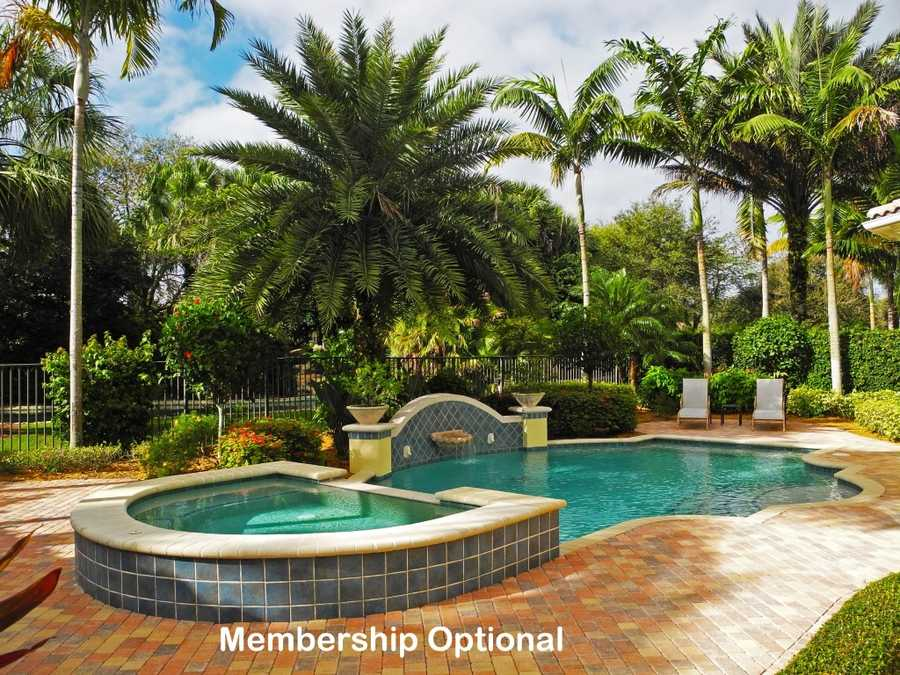 The large pool is complimented by an adjoining jacuzzi.