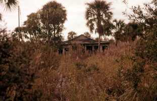 Abandoned lumber camp home in the Everglades. (1960)