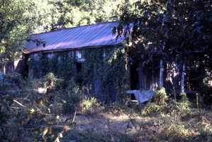 Unidentified dilapidated building in Apalachicola, Florida. (Unknown date)