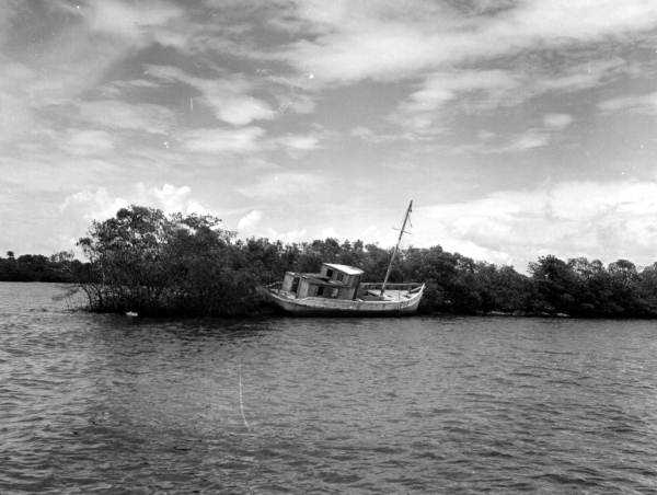 Abandoned boat in south Florida. (1961)