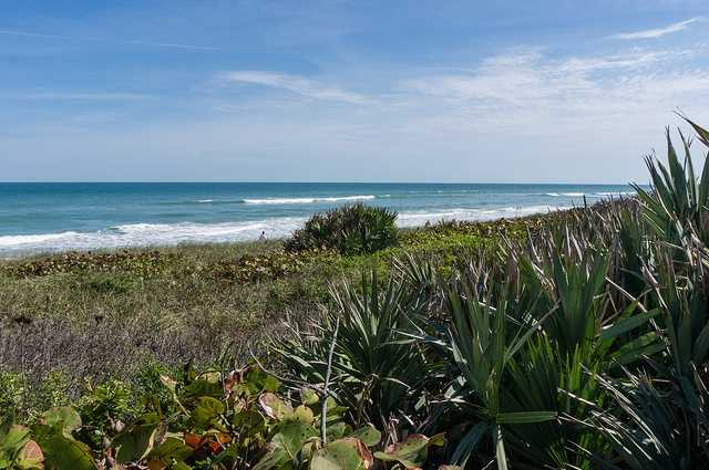 Canaveral, along the space coast, has welcomed people and wildlife throughout history. Threatened animals like sea turtles have found refuge there, and humans have been able to enjoy swimming, fishing and going for a stroll down a wooded trail.