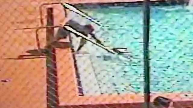 Several children suffered electric shocks while swimming in a swimming pool in Hialeah.