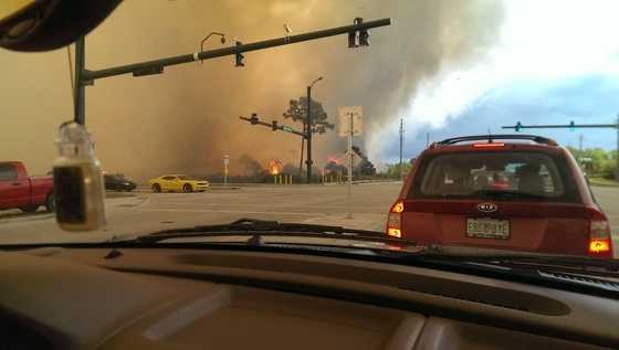 Take a look at some of the images from the controlled burn that raged out of control for a short while in Jensen Beach on Wednesday.