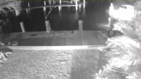 Photo: surveillance video