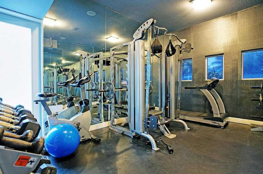 Spacious home gym equipped with numerous machines and free weights.