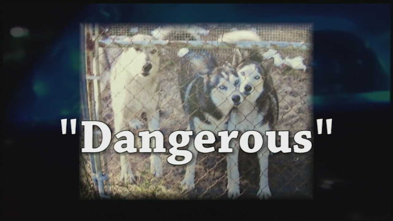 A WPBF 25 News review of Palm Beach County's dangerous dog case files found a number of dog owners failing to comply with legal requirements imposed on them. Reporter John Dzenitis has the special report.