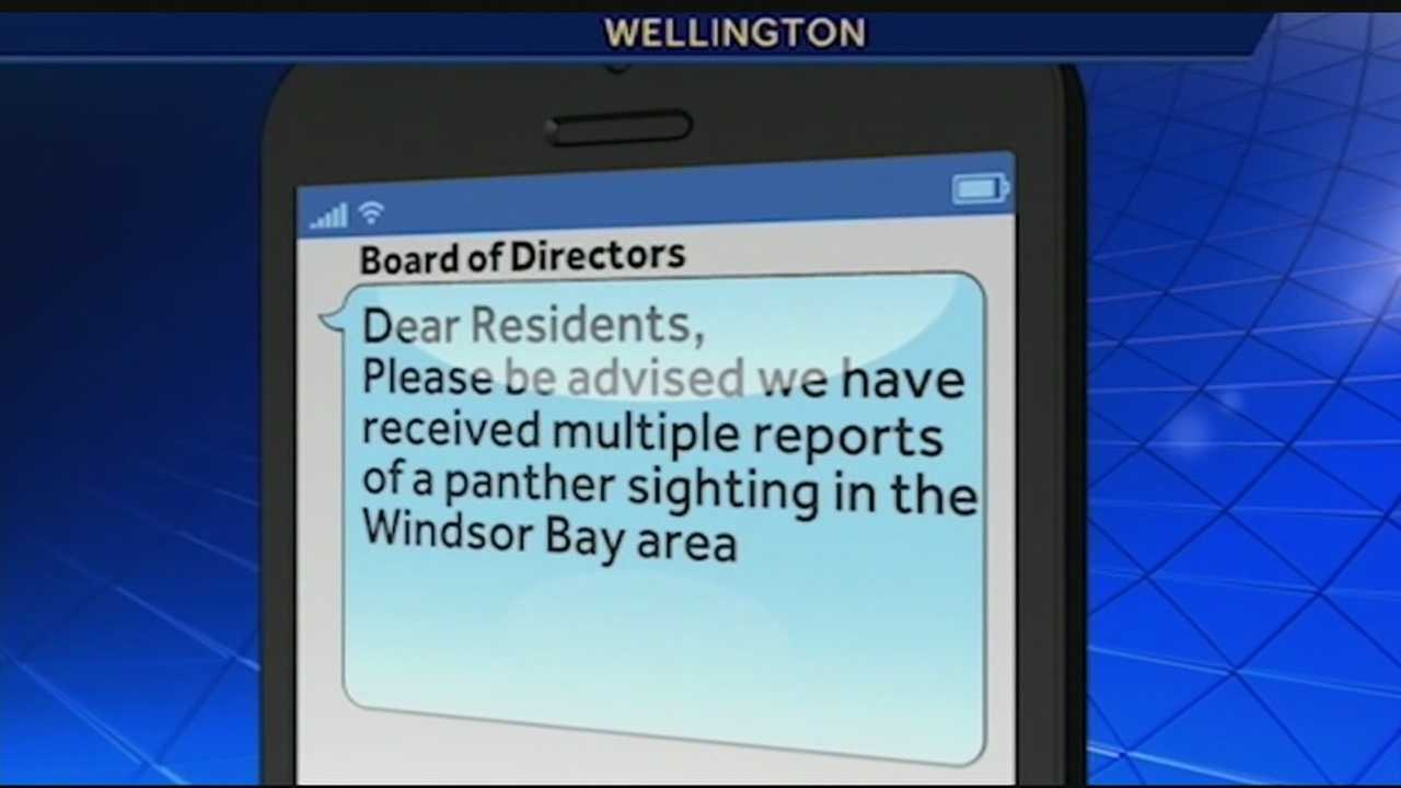 A Wellington Community is on edge after reports of a panther sighting in their neighborhood. Erin Guy has the report.