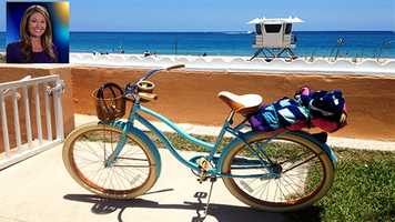 "WPBF 25 Anchor/Reporter Erin Guy's favorite things:""I love my beach cruiser. They come in all different colors, sizes and prices. I love that mine has a basket for my other favorite thing (Ellie) and a drink holder for my favorite Dunkin iced tea.""  (Walmart $120.00)"