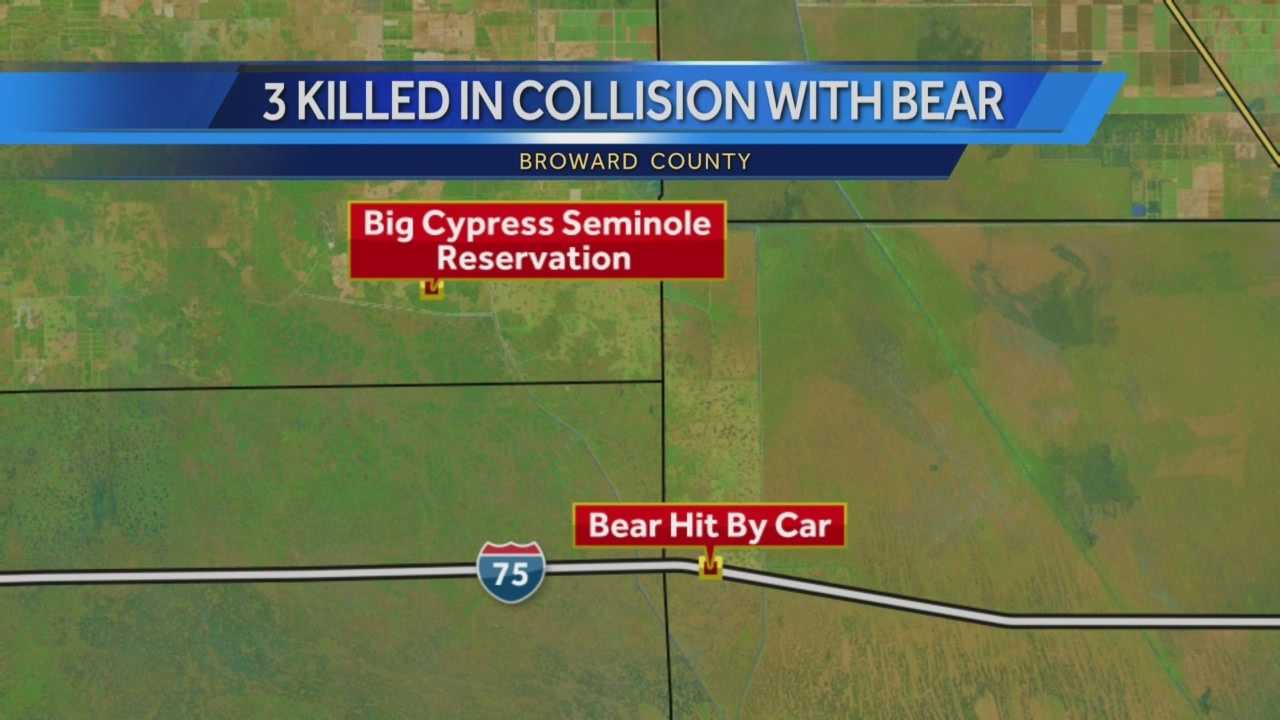 Authorities with the Broward County Sheriff's Office said a car hit a bear on Snake Road, west of Interstate 75, on Sunday. A news release indicated a car hit a black bear that was crossing the street. A second vehicle stopped to help those involved in the crash, when a third car hit the crowd and crushed the first car.