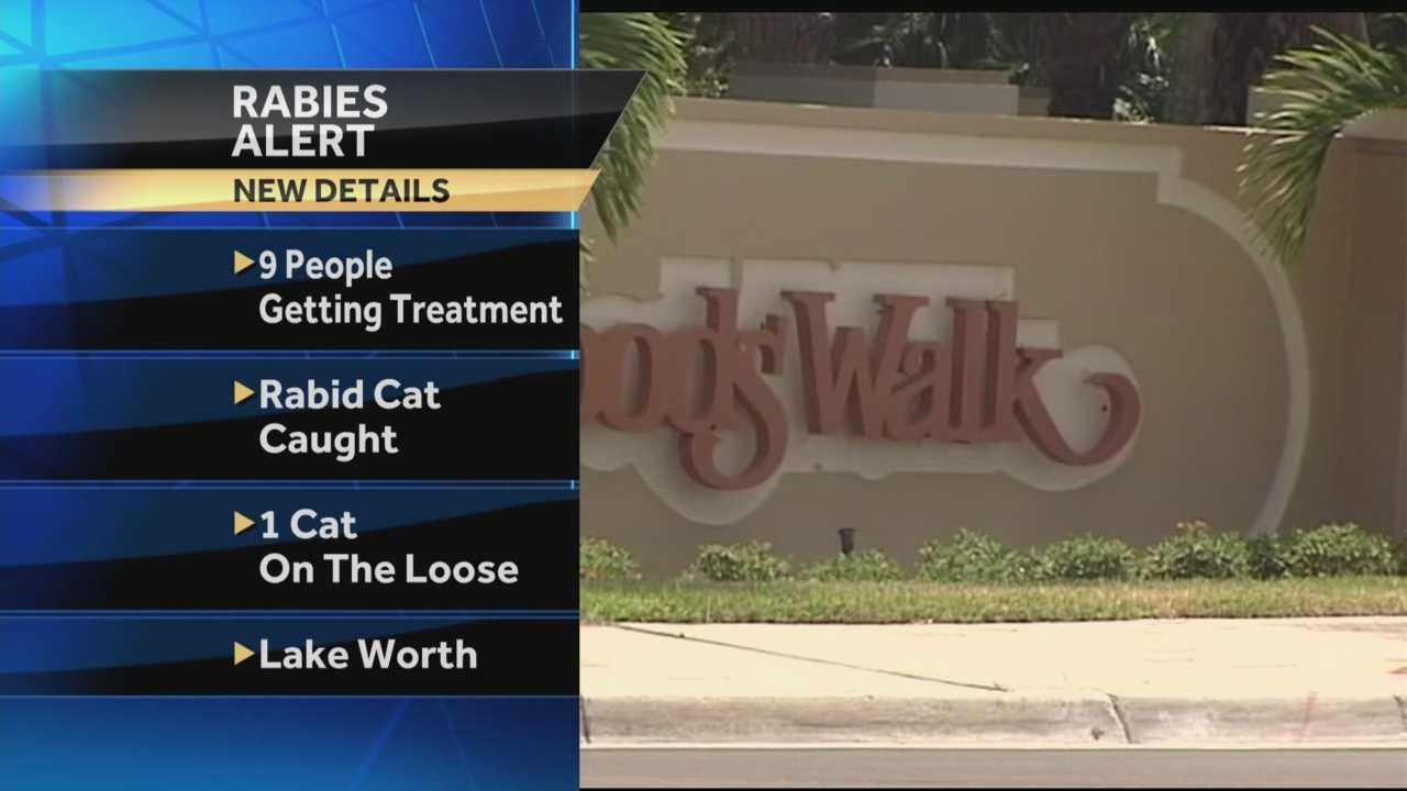 New developments: Nine people are being treated after being exposed to rabid cat in Lake Worth. That number is up from the 6 people initially reported on Thursday.