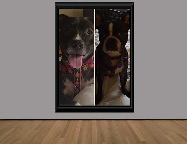 Ryker Belle & Daisy