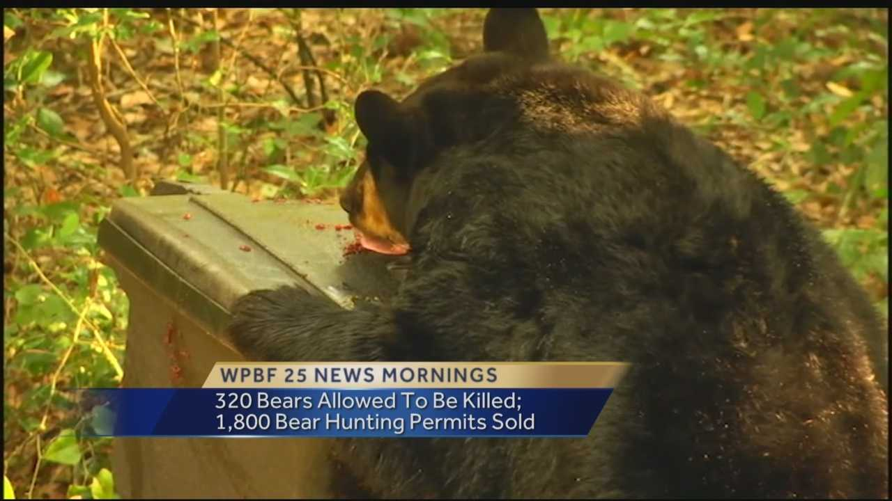 Florida wildlife officials have approved the killing of 320 black bears next month during the state's first bear hunting season in more than 20 years.