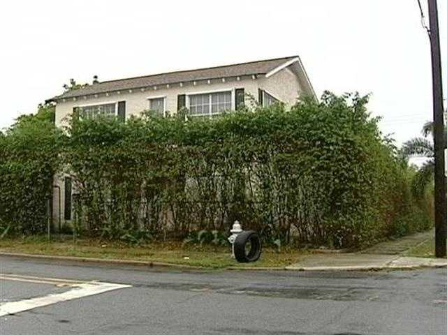 Linda Weston, her boyfriend, Gregory Thomas, and another man, Eddie Wright lived at this home at 701 52nd St. in West Palm Beach.