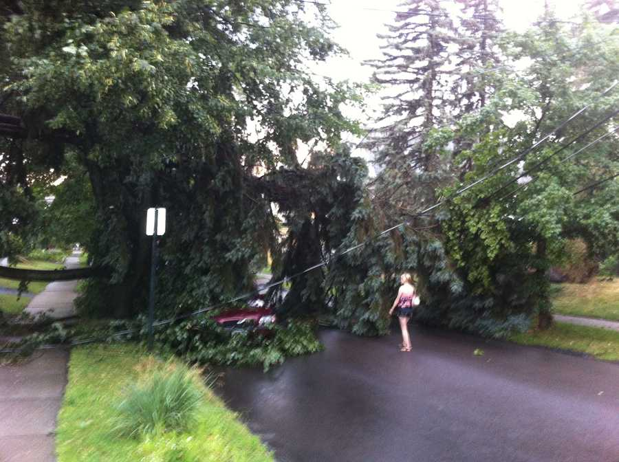 A tree takes down lines and covers a car on Brookes Ave in Burlington, Vt.