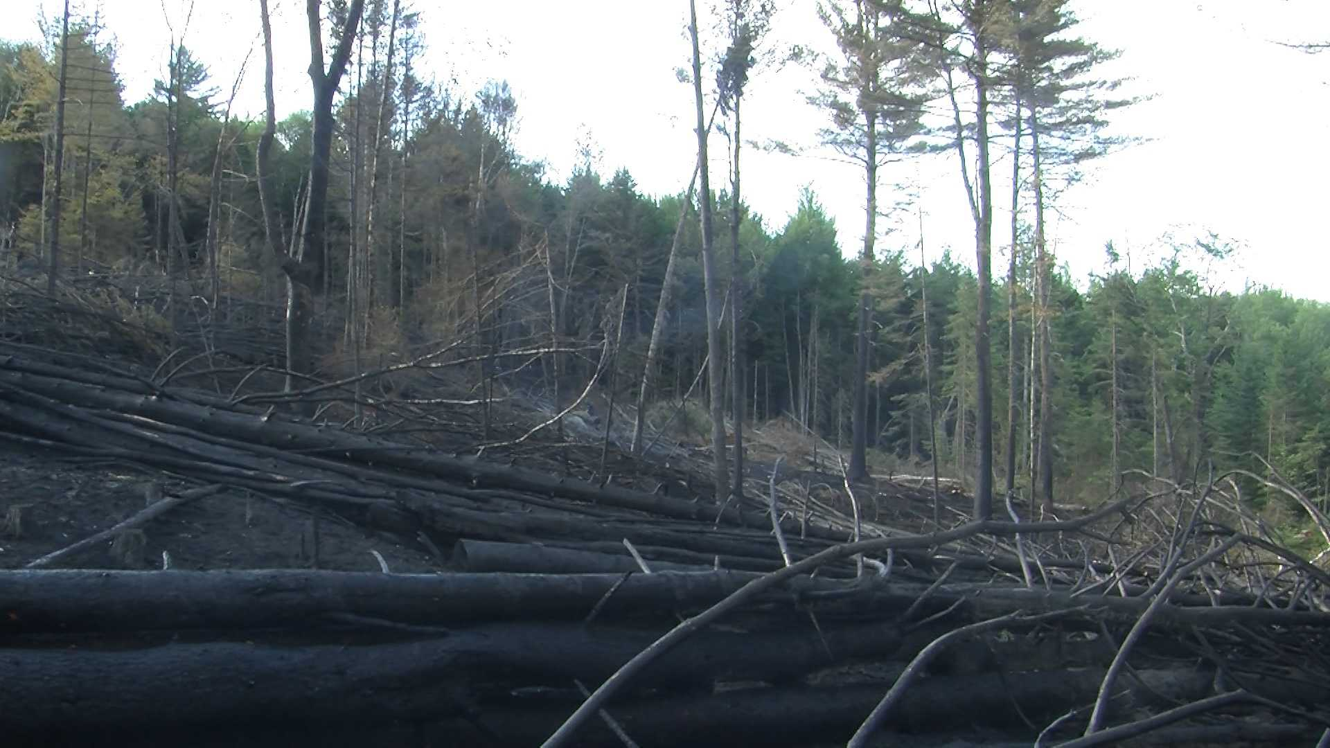 Firefighters battle Groton forest fire