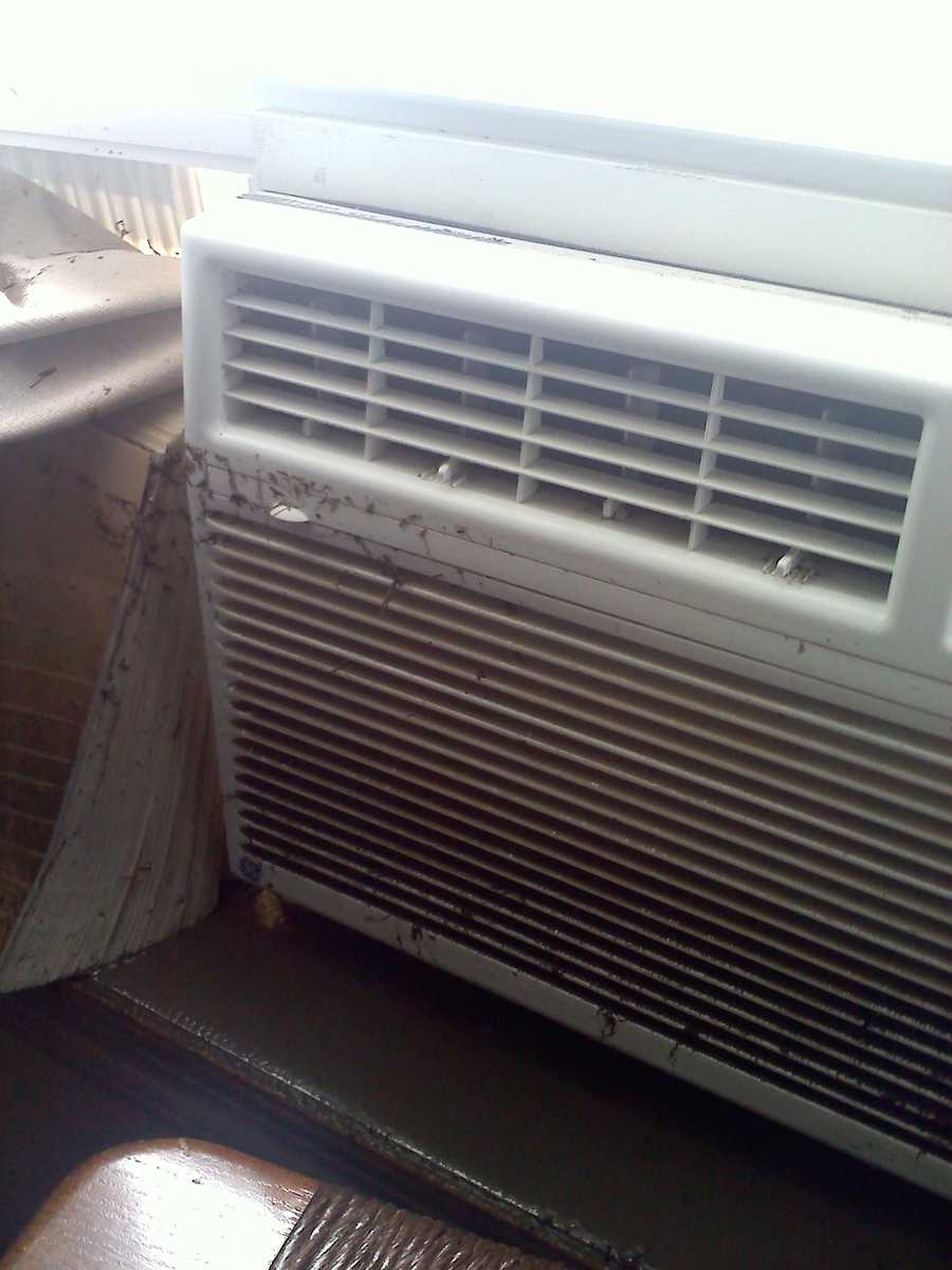 Sandy Gaffney's air conditioner is covered in mud and gunk.