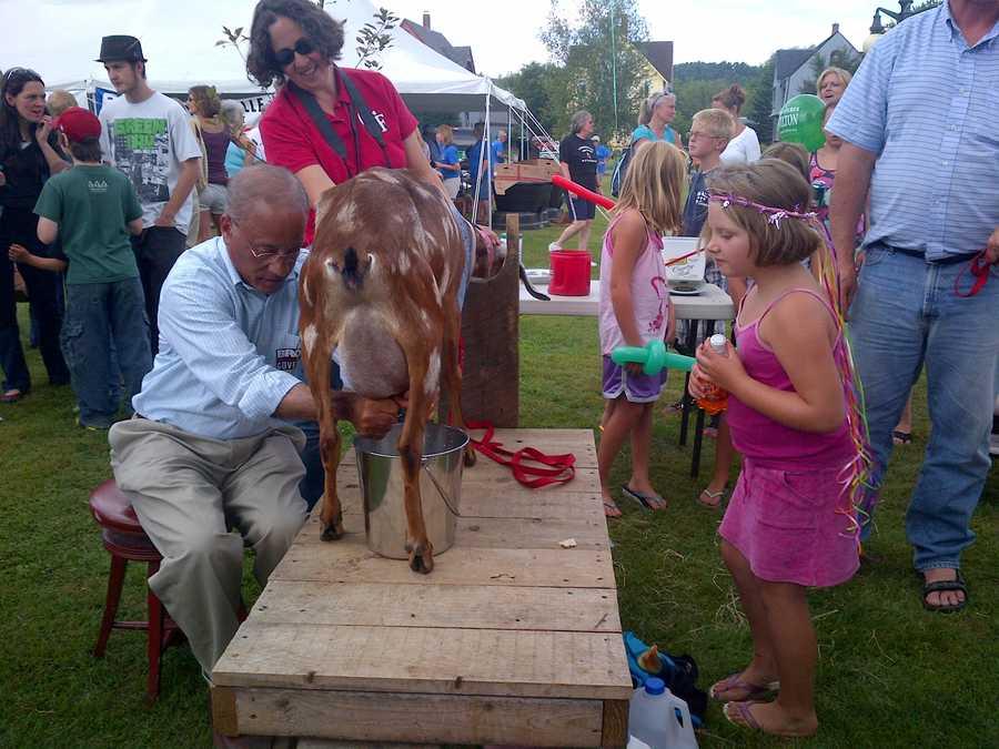 Gubernatorial Randy Brock milks a goat.