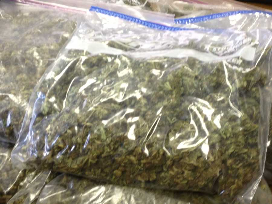 Freezer bags full of pot were collected as evidence.