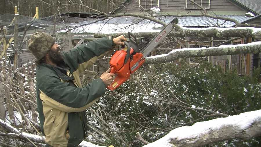 The sound of chainsaws was common in Salisbury, as winds toppled many trees there.