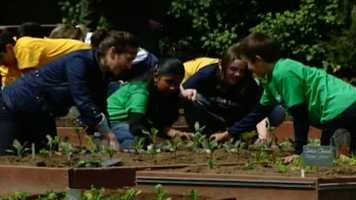 Milton students plan to build a garden at the elementary school.
