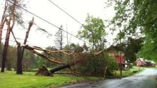 Trees and lines down in St. Johnsbury.
