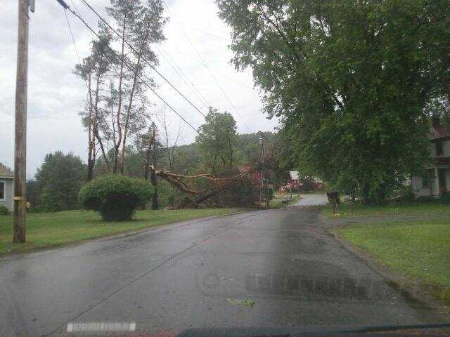 Snapped tree on Pleasant Street in St. Johnsbury.